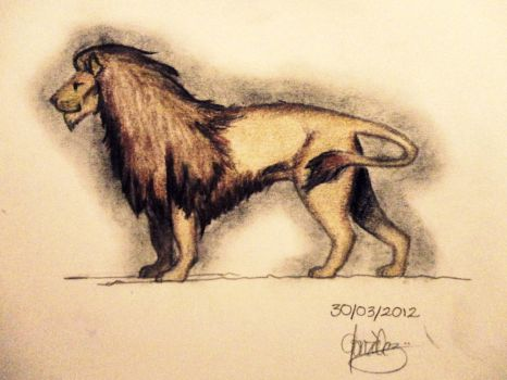 Lion1 by bekyloves