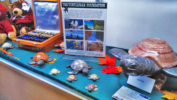 Turtles on Display by ThatTMNTchick