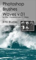 Shades Waves v.01 HD Photoshop Brushes by shadedancer619