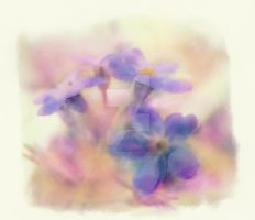 Forgetmenot by Elenihrivesse