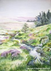 Stream at Cloghoge, Wicklow Mountains by SuzanneHole