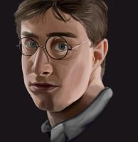 Harry Potter - Book 6 by picklelova