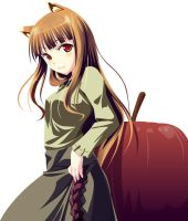 Spice and Wolf : Horo Vector by Takeshi-PosesseD