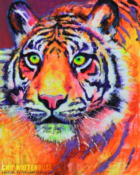 Tiger Colors by ChipWhitehouse