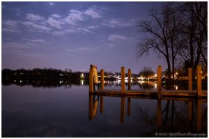 Violet Reflections by nighthawk663