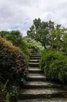 Stairs-Stock (2) by Mocris