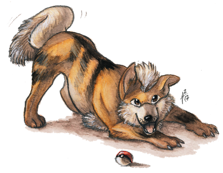 Gotta Draw 'em All: #058 GROWLITHE (With Video) by ARVEN92