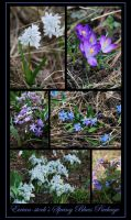 Spring Blues Package by Eirian-stock