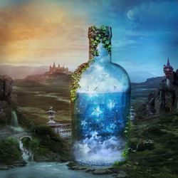 Bottled Wishes