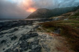 Cape Perpetua 2 by arnaudperret
