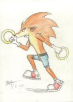 Crash the Hedgehog by Tha-Dragon-of-Random