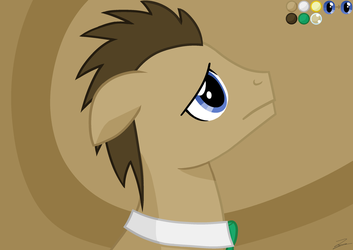Doctor Whooves by UU-Unknown-User