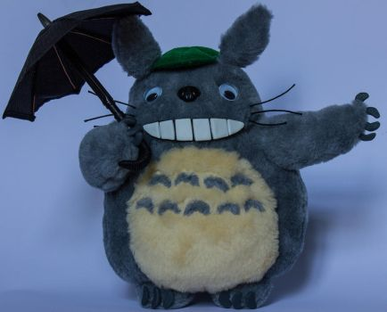 Totoro with umbrella by Blodwedden