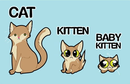 Cat Stages of Life by Radioactive-Insanity