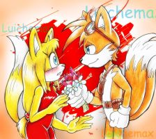 Tails and Zooey by Luichemaxx