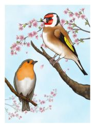 Goldfinch and Robin by Kradath