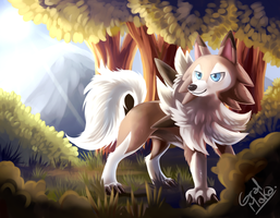Lycanroc (Midday form) by HintoArt