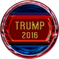 Pin - Trump 2016 by fmr0