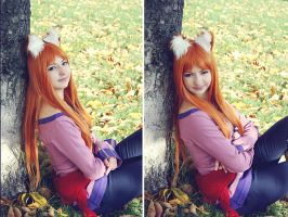 Cosplay Horo 2 by TophRayne