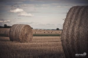 straw giants by AnnikaLikes