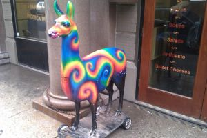 all hale the rainbow llama by duby149
