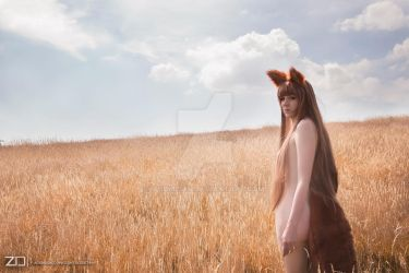 horo  spice and wolf by Tsumisan