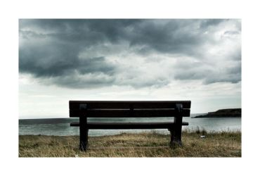 The Bench by Wilce