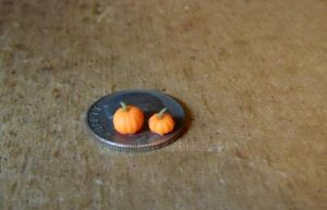 Micro Miniature Pumpkins by Kyle-Lefort