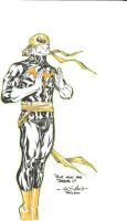 Iron Fist - BDcinegoodies 2010 by SpiderGuile