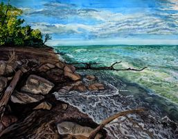 Point Pelee Waves by cirruscastle