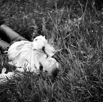 In the grass by nuxtu