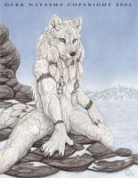 Artic Fox by darknatasha