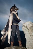 Teva - Taxidermy Wolf Pelt Headdress by NaturePunk