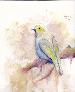 Bird -- Aquarelle by Morbid0beauty