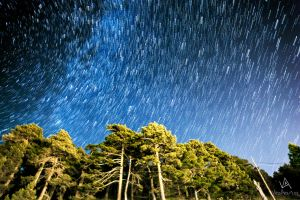 Little bit of Star Trail by VitoDesArts