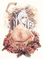 Jack Frost by ChartreuseFae