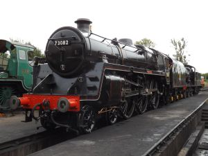 73082 Camelot on shed by mrbill6ishere
