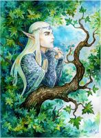 Summer in Mirkwood by Candra