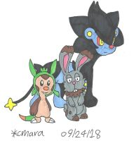Chespin, Bunnelby and Luxray