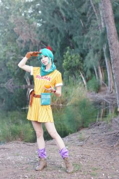 Dragon Ball - Bulma VIII by MeganCoffey
