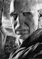 Voldemort by LeapDay