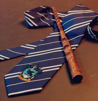 Harry Potter series: wand by gerodere