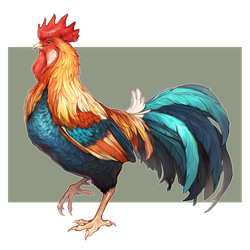 rooster by cymurri