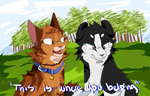This Is Where You Belong // TallxJake by weedsilverfang