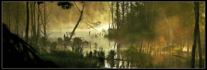 Morning on the lake in the woods '7' by AlloxaFirst