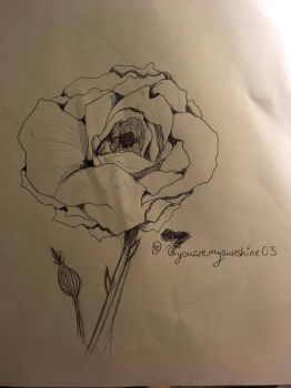 InkTober~ Day Two~ Rose by DixieLuve