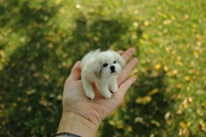 Needle felted shih tzu commission by amber-rose-creations