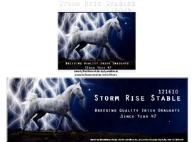 Stable Avatar and Siggy for Storm Rise Stable by Explicit18