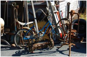 Constableville, NY - Blue Bicycle by MauserGirl
