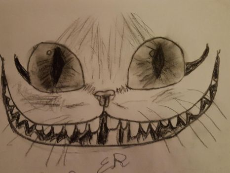 cheshire cat charcoal drawing by BombBoss24